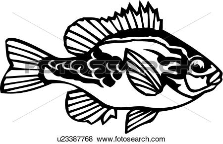 Clip Art of , animal, fish, ocean, pumpkin seed, species.