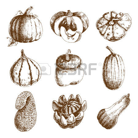18,132 Varieties Stock Vector Illustration And Royalty Free.