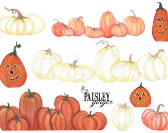 Pumpkin varieties.