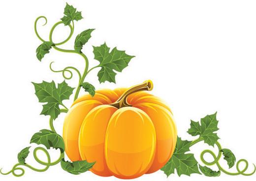 Free halloween pumpkin vectors graphics free vector download.
