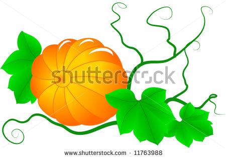 Pumpkin Vines Clipart.