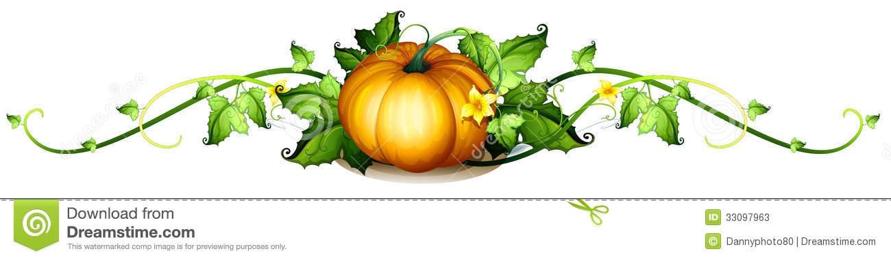 Pumpkin vine border clipart.