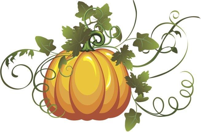 Pumpkin On Vine Clipart.