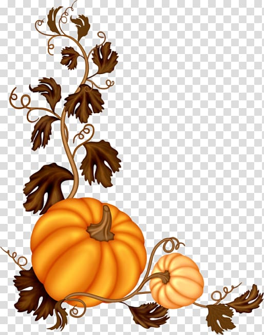 Pumpkin Software , Decorative pumpkin vine transparent.