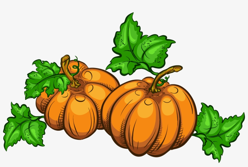 Jpg Free Library Transparent Pumpkins Png Clipart Picture.