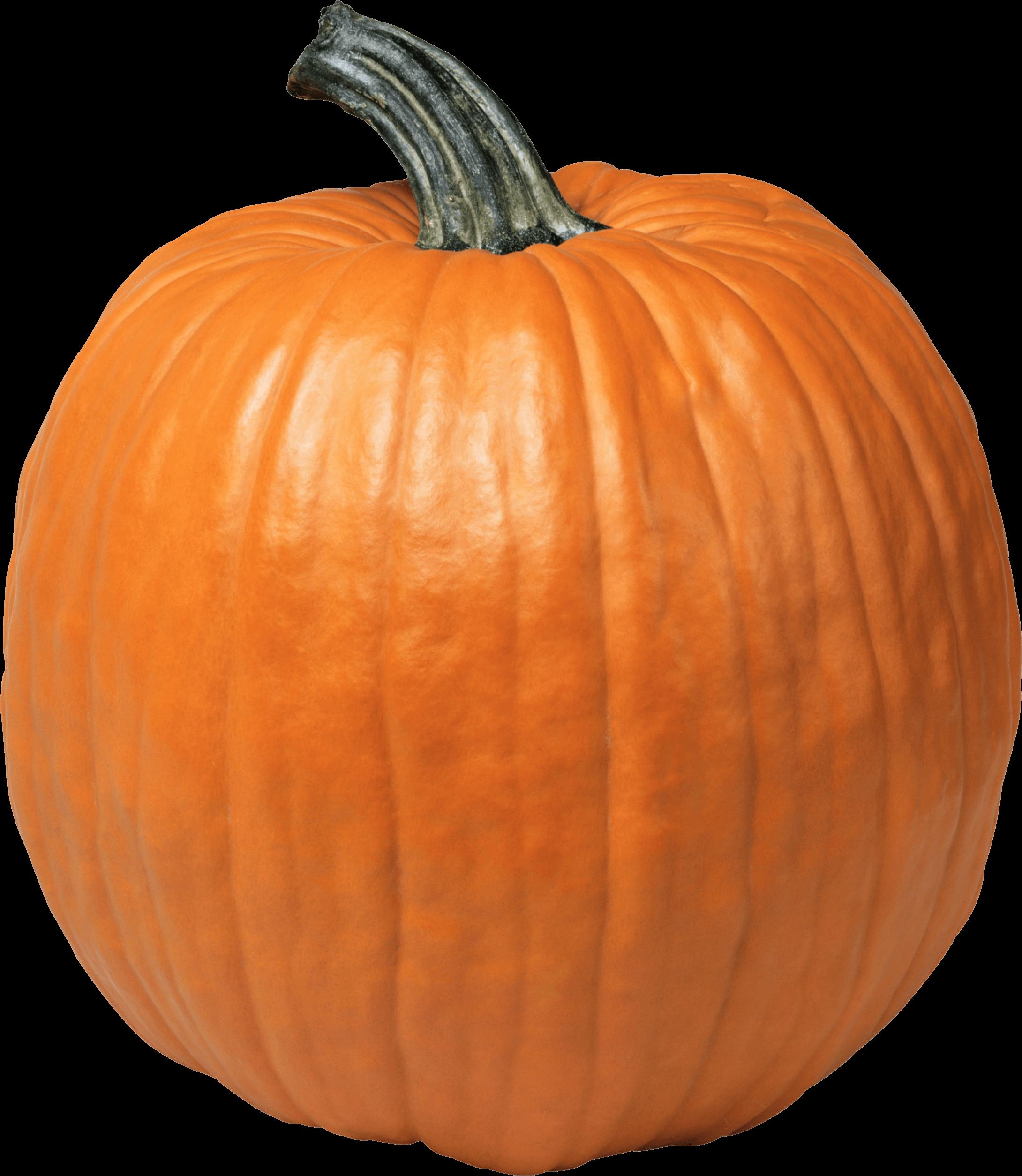 Single Pumpkin transparent PNG.