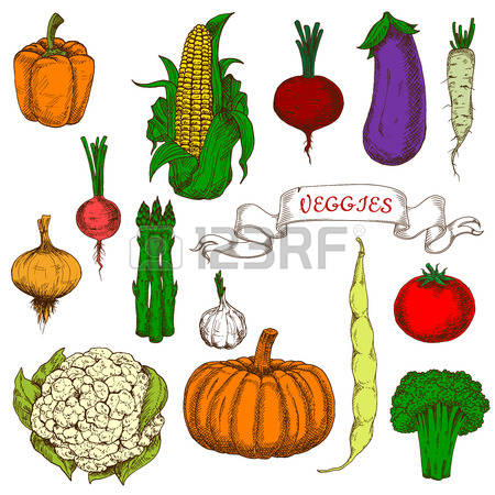 2,785 Sweet Tomato Stock Vector Illustration And Royalty Free.