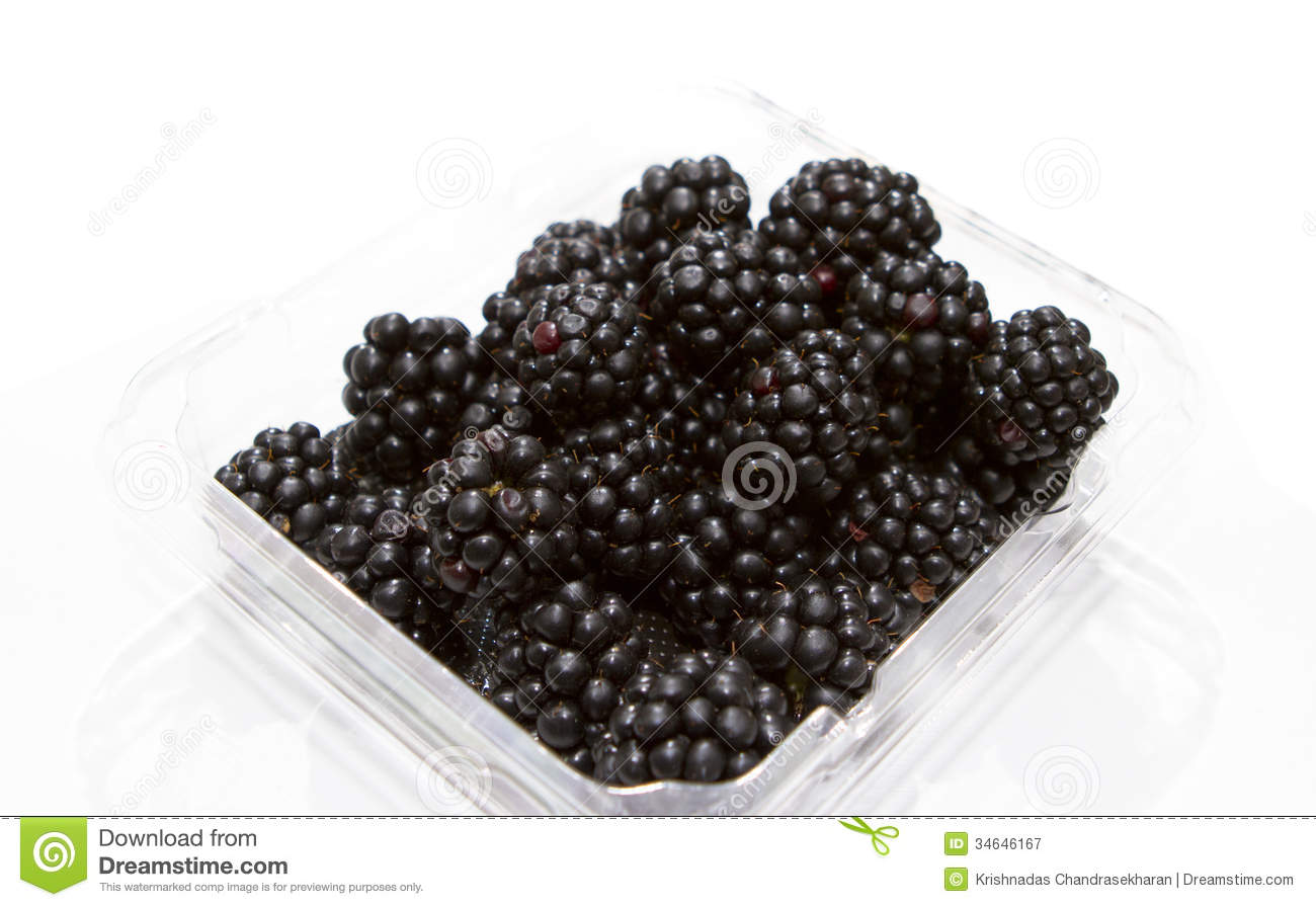 Punnet Of Blackberry Royalty Free Stock Photography.