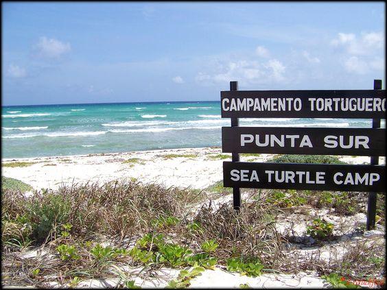 Punta Sur, Cozumel, Mexico.