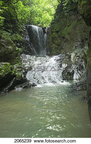 Stock Photograph of Waterfall, Puntarenas, Costa Rica 2065239.