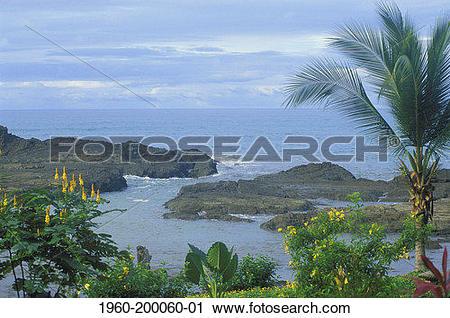 Stock Photography of Costa Rica, Puntarenas. 1960.
