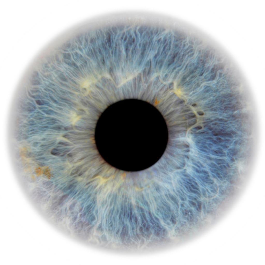 Eye Pupil PNG Image Transparent.