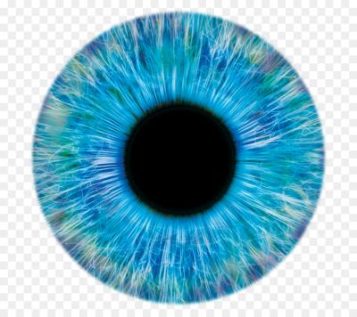 Pupil PNG.