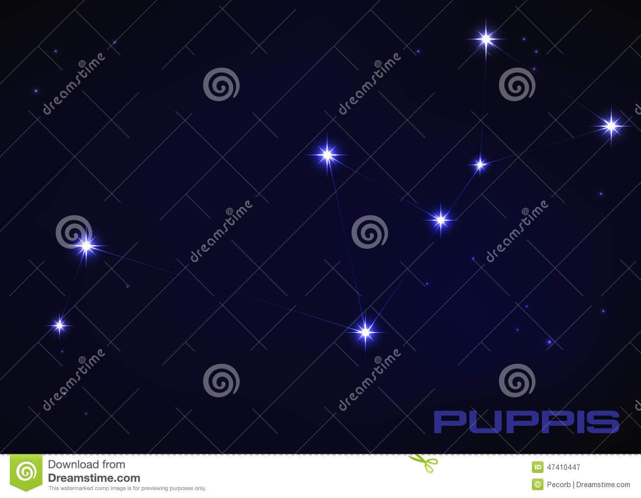 Puppies Constellation Stock Vector.