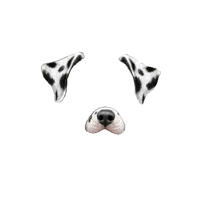 Snapchat Filter Dalmatian Dog transparent PNG.