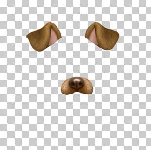 Dog Filter Png (27+ images).