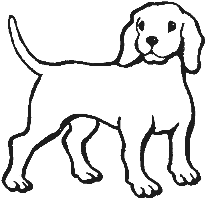 Black and white dog drawing - photo#40