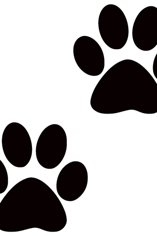 Puppy, Dog, Cat, transparent png image & clipart free download.