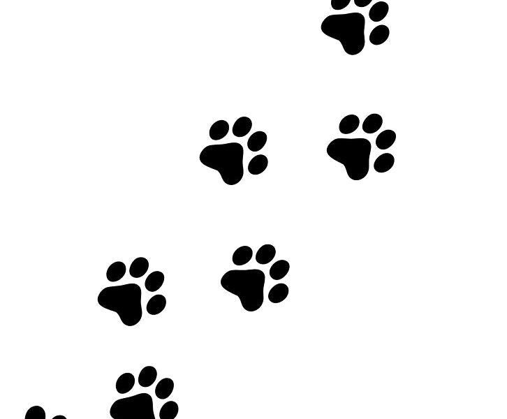 Paw Print Puppy Prints Clipart Free Best Transparent Png 3.