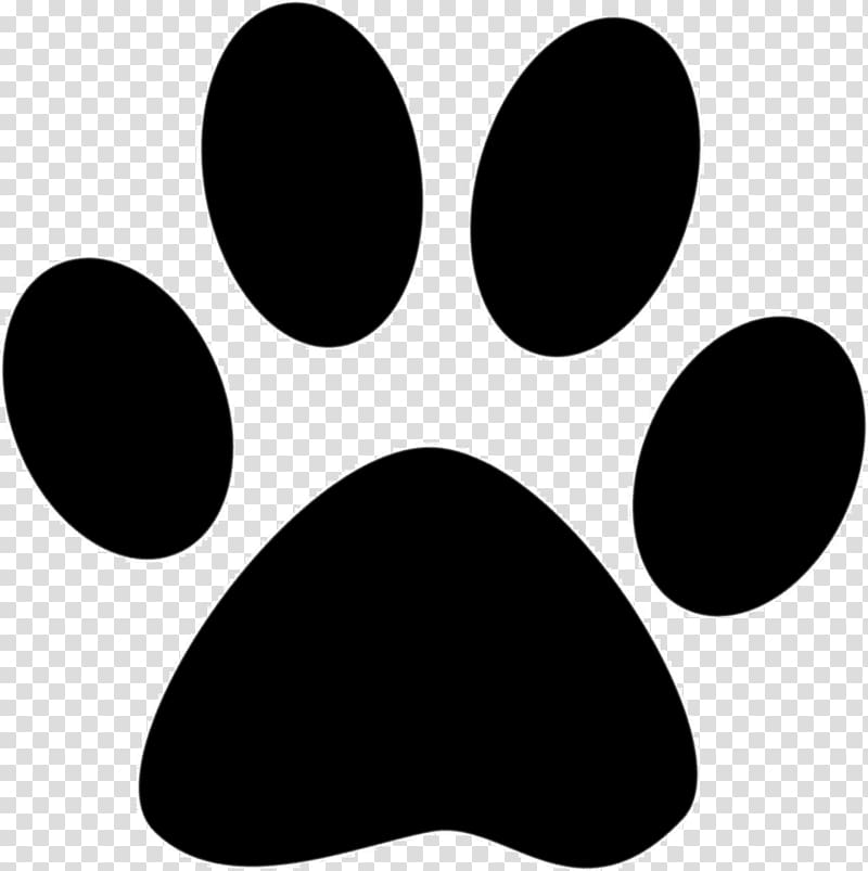 Cat Dog Puppy Paw , paw prints transparent background PNG.