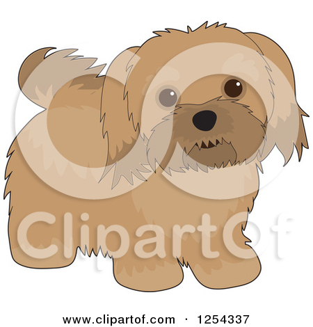 Clipart of a Cute Havanese Dog.
