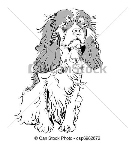 Vector Illustration of vector purebred dog Cavalier King Charles.