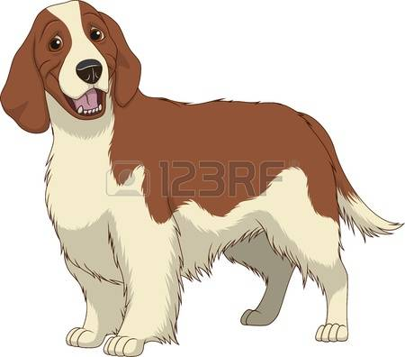 13,563 Purebred Dog Stock Vector Illustration And Royalty Free.