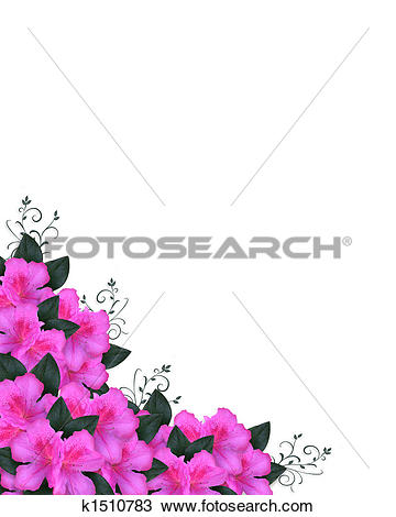 Drawing of Invitation Border Pink Azaleas k1510783.