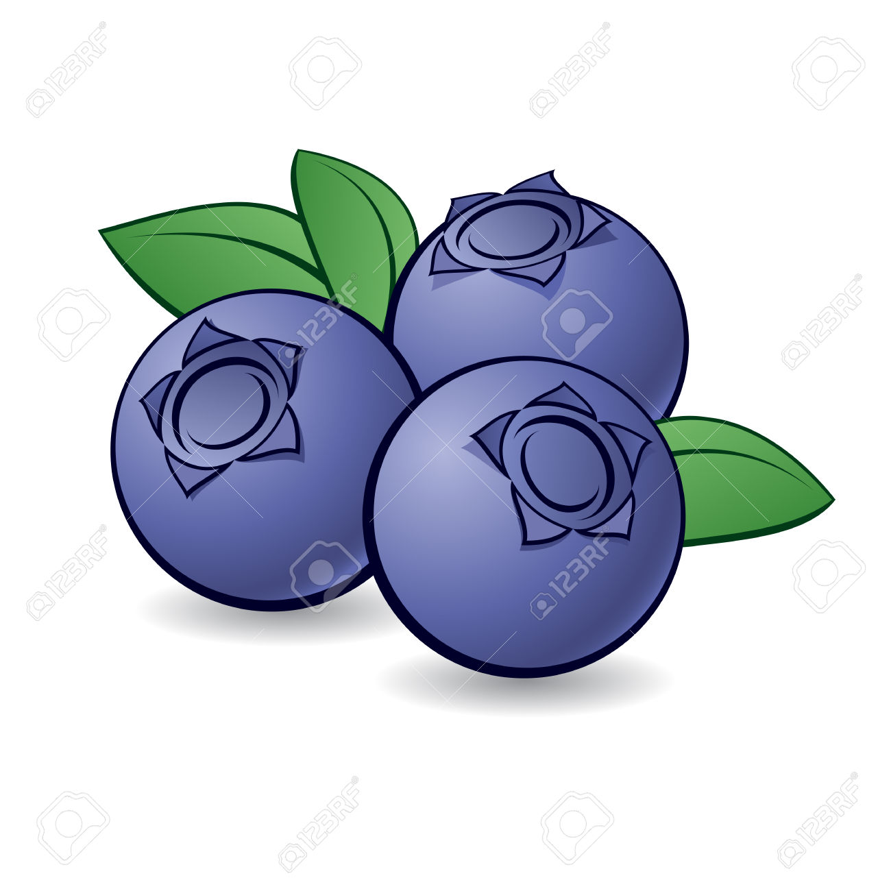 Showing post & media for Cartoon purple berries.