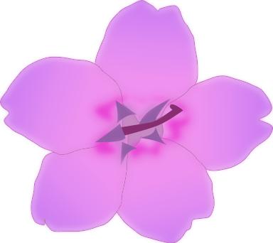 soft purple blossom.