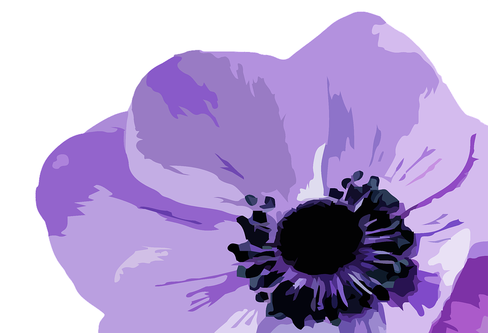 Free illustration: Flower, Purple, Purple Flower.