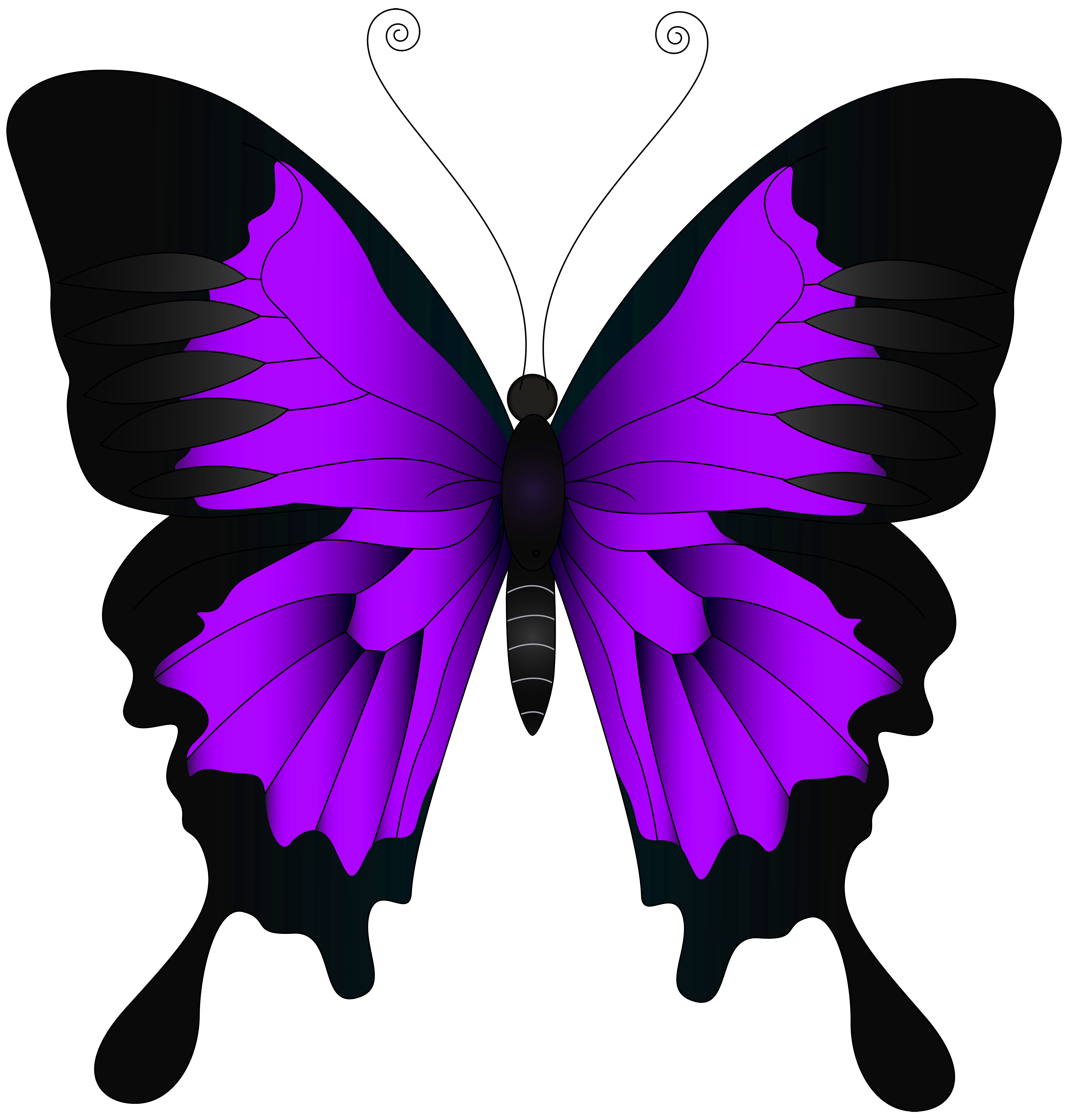 Purple Butterfly PNG Clip Art Image.