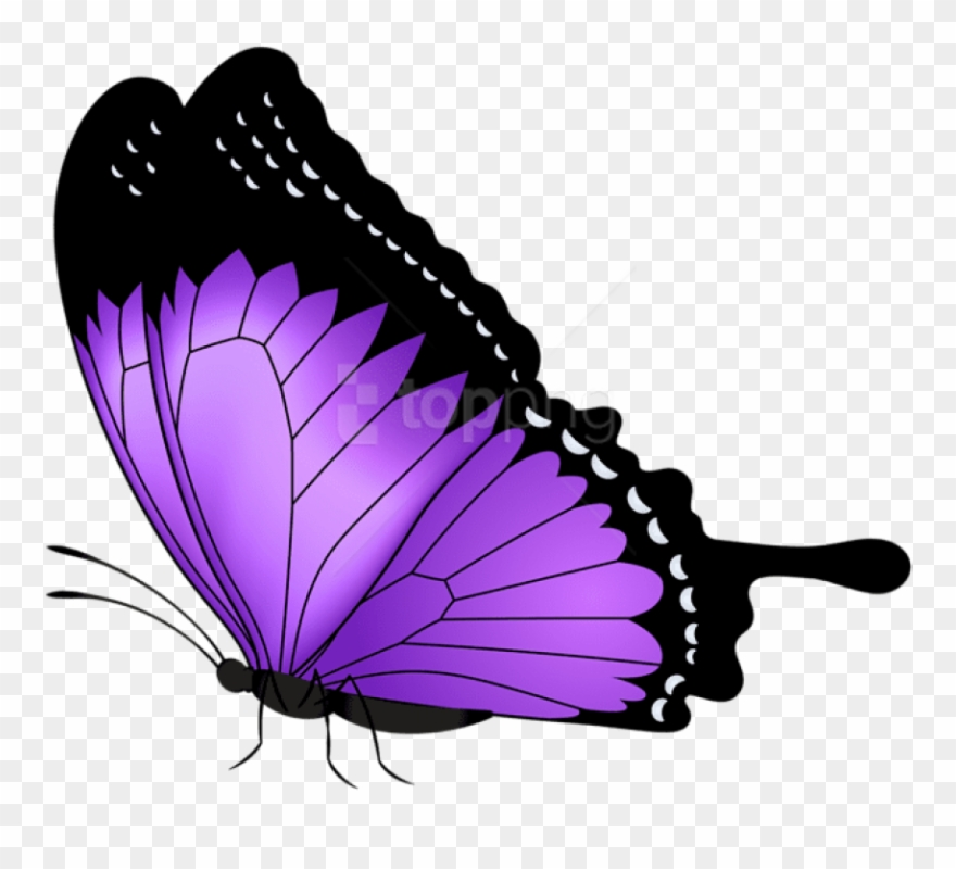 Purple Butterfly Transparent Png Clip Art Image Gallery.