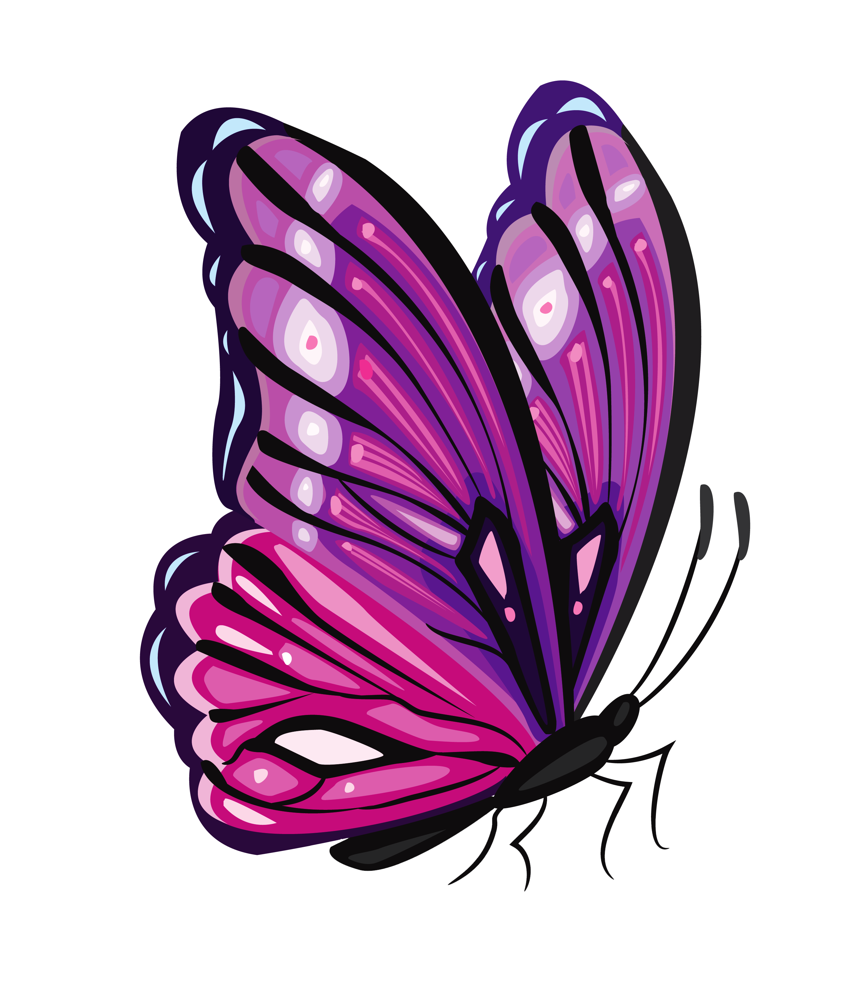 purple butterfly png clipart clipground