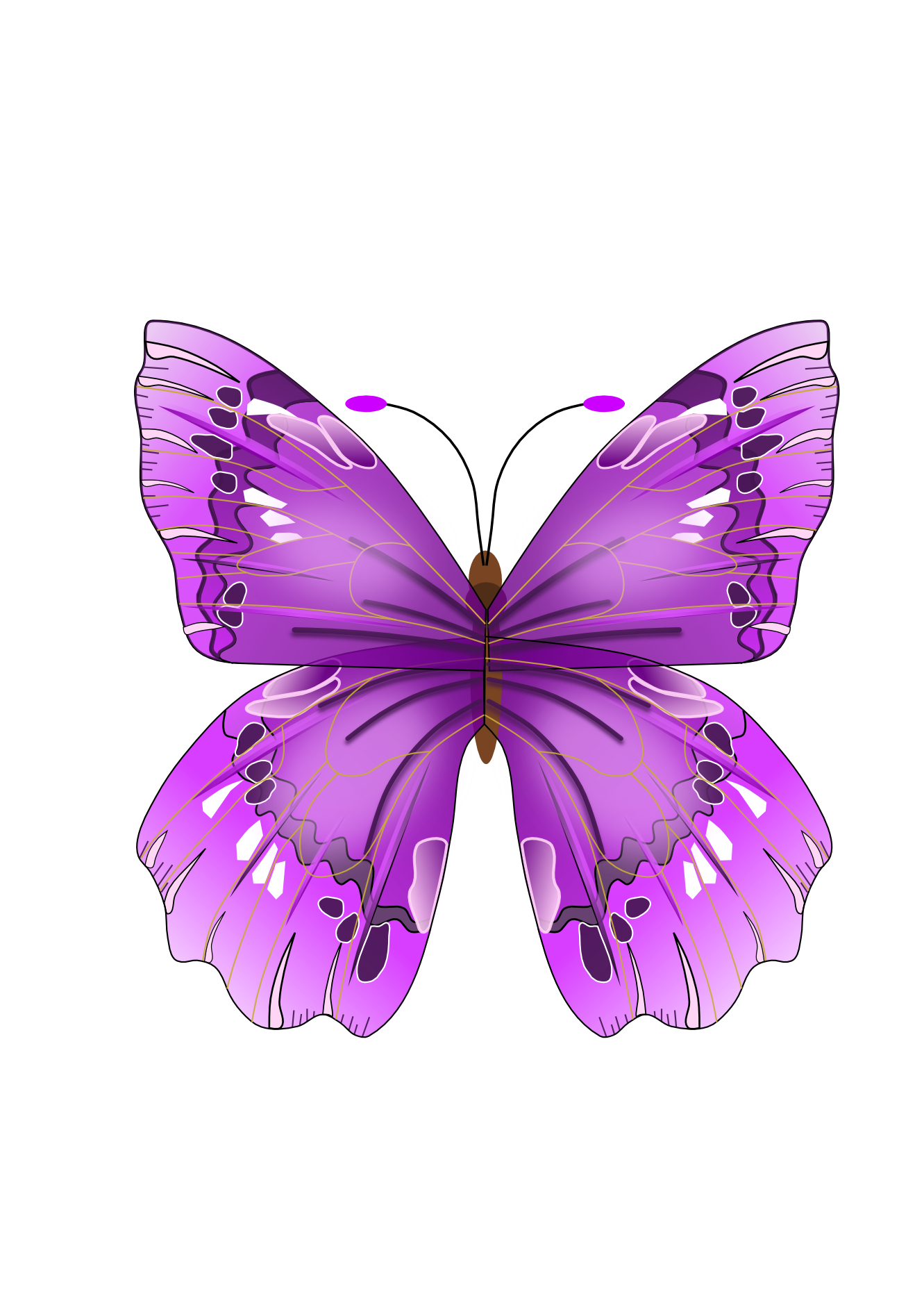 Purple Butterfly Png Clipart 20 Free Cliparts Download