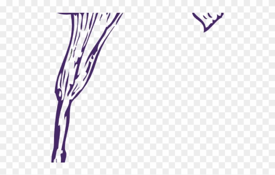 Purple Clipart Calla Lilies.
