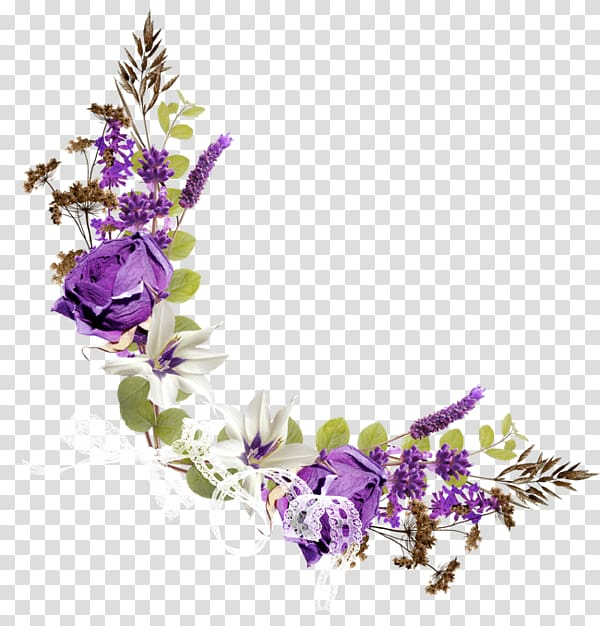 Purple and white flowers illustration, Flower Purple.