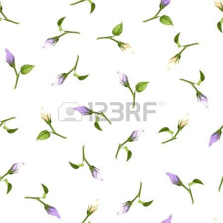 47,319 Flower Buds Stock Vector Illustration And Royalty Free.
