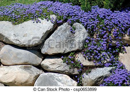 Purple garden clipart.