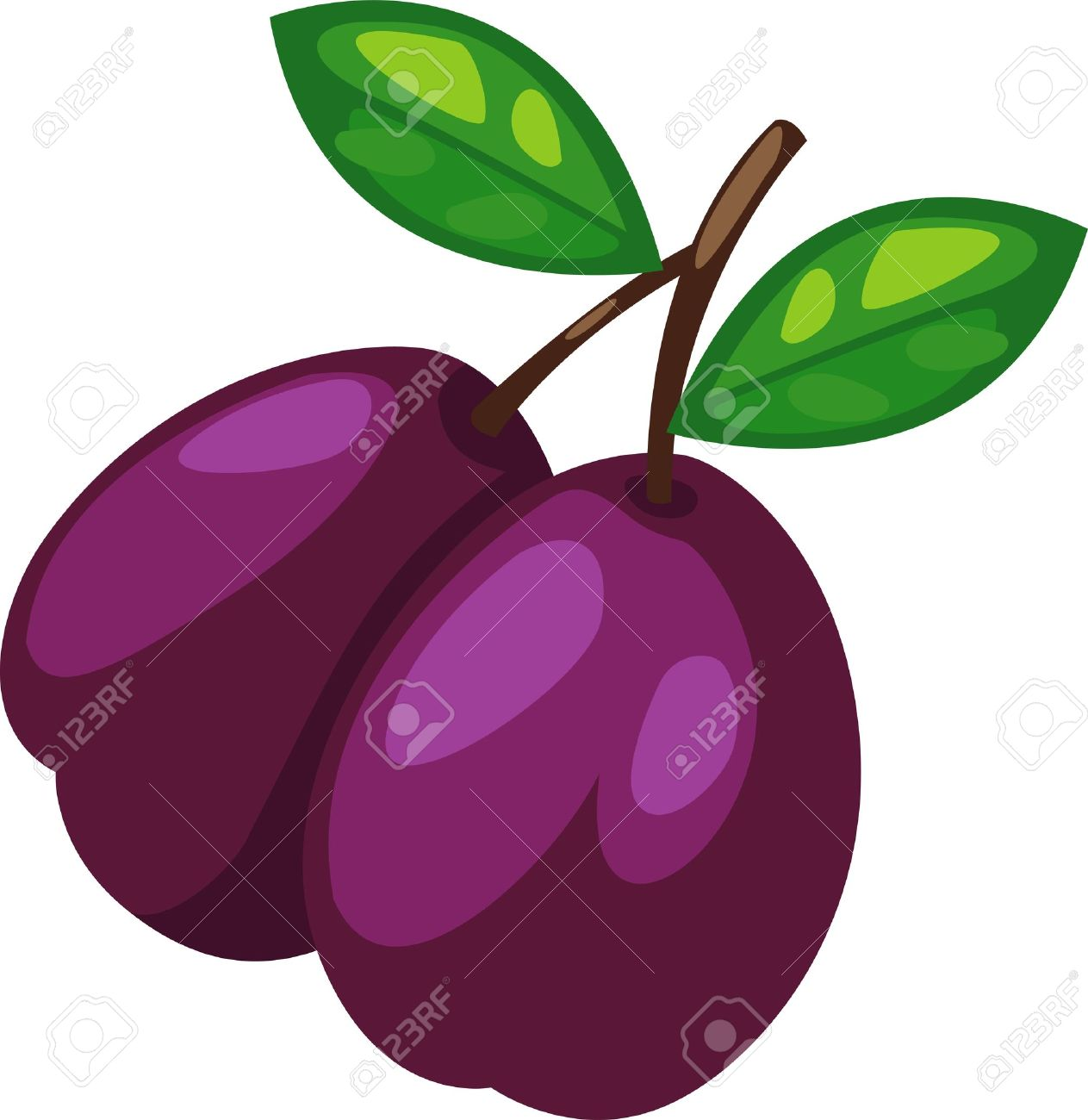 15,915 Plum Fruit Stock Vector Illustration And Royalty Free Plum.