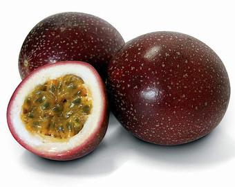 Passiflora edulis.