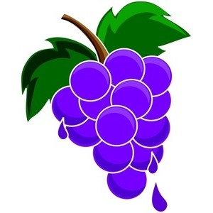 Clipart purple grapes.