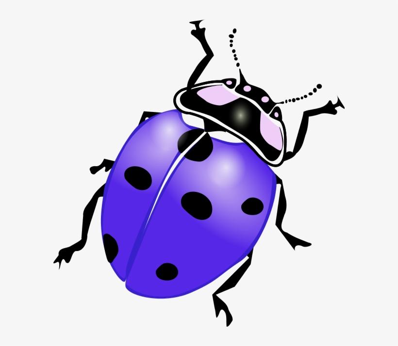 Ladybug Clipart Purple.