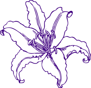 Purple Lilly Clip Art at Clker.com.