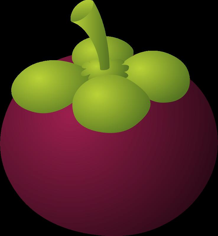 Free to Use & Public Domain Mangosteen Clip Art.