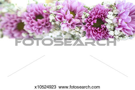 Stock Photo of Purple and mauve flower frame on white x10524923.