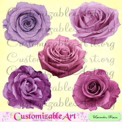 Rose Clipart Digital Roses Clip Art Lavender by CustomizableArt.