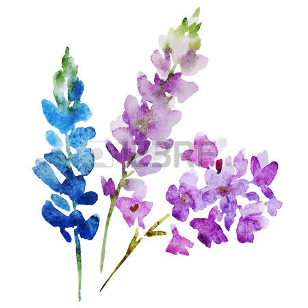 51,291 Purple Flowers Stock Vector Illustration And Royalty Free.