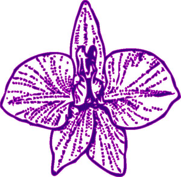 Purple Orchid Clip Art at Clker.com.
