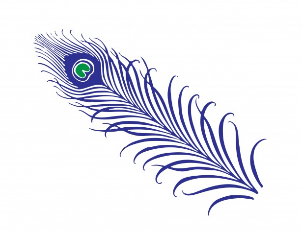 Peacock Feather Clipart Free Stock Photo.
